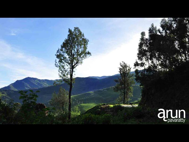A scene from Munnar