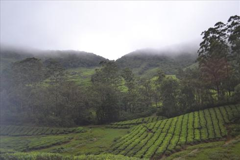 Meghamalai