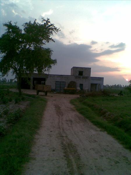 Sehrawat Bagwani and Farm House