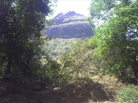 Sahyadri
